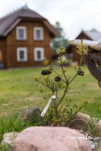 Svečių namai Papėje Jurgi tarp Baltijos jūros ir Papės ežero - 40