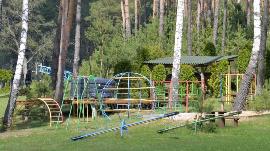 Apartamentai, kambariai, nameliai, kempingas Paežerės Papartis Molėtų rajone prie Bebrusų ežero - 77