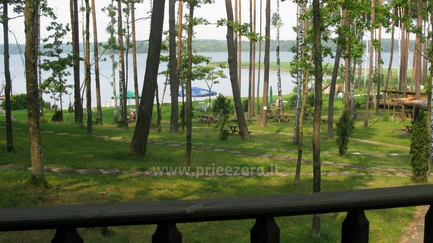 Apartamentai, kambariai, nameliai, kempingas Paežerės Papartis Molėtų rajone prie Bebrusų ežero - 86