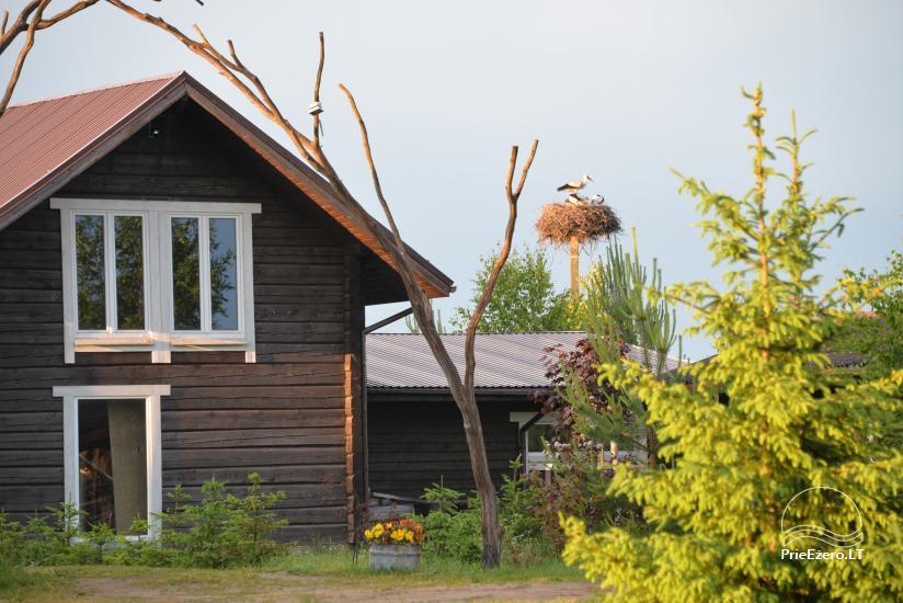 """Sodyba """"KLIUKAI"""" Molėtų rajone – rąstiniai nameliai šeimų poilsiui - 7"""