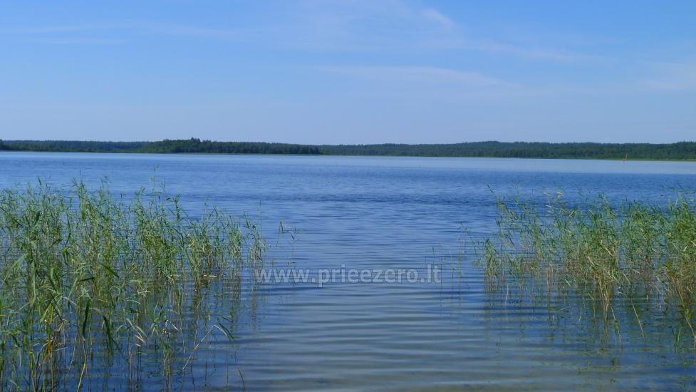 Sodyba Molėtų rajone prie Stirnės upės Stirnelės viensėdis - 34