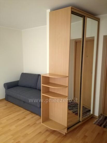 Poilsis Druskininkuose - vieno kambario buto nuoma kurorto centre - 5