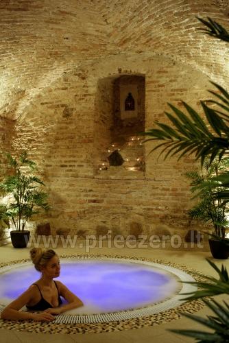 Pobūvių salė, pirčių kompleksas, sūkurinė vonia Vilniuje Barboros svajos - 2