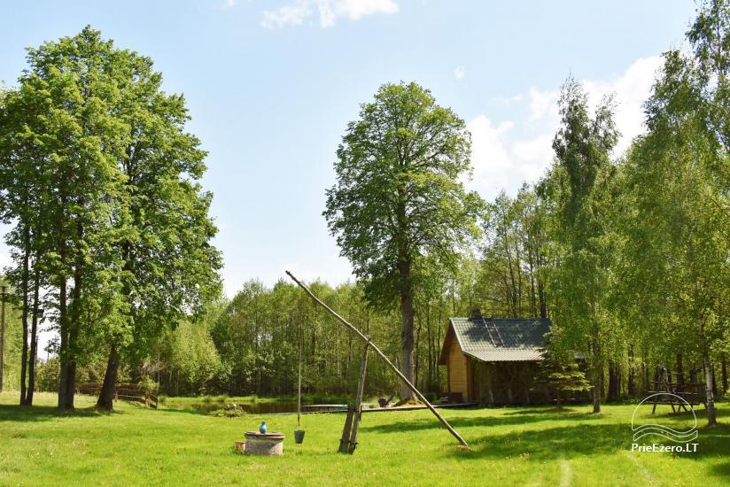 Adomėnų sodyba - ramus, medžiais apsuptas vienkiemis Miškiškėse - 20