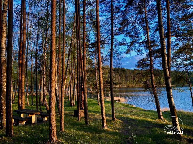 """Poilsiavietė prie Siesarties ežero - """"Ąžuolas"""" - 8"""