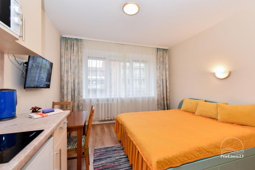 Jaukus 1 kambario butas – studija Druskininkų centre šalia vandens parko ir gydyklų - 1