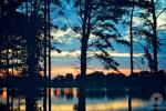 Pirtis ant ežero kranto - 6