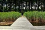 """Poilsiavietė """"Kalionija"""" ant ežero kranto:sąskrydžiams,iškyloms su palapinėmis"""