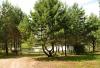 Poilsiavietė Kalionija ant ežero kranto:sąskrydžiams,iškyloms su palapinėmis - 2