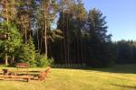 Sodyba Plungės rajone prie Platelių ežero - 7
