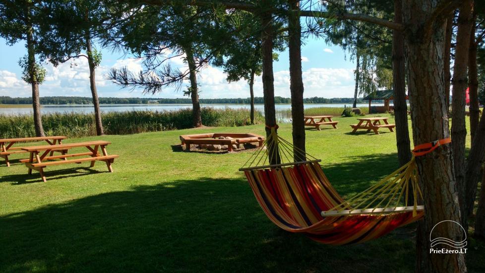Ežero krantas poilsiavietė ant Galuonų ež. kranto Molėtų raj.: vietos palapinėms, kemperiams - 15