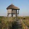 Sodyba Jukumi Papėje - kambarių nuoma tarp ežero ir jūros - 12