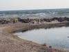 Sodyba Jukumi Papėje - kambarių nuoma tarp ežero ir jūros - 13