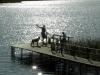 """""""Šamo uostas"""": pirtis, žvejyba, pokylių salės ir pramogos - 16"""