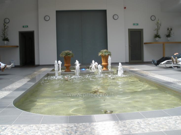 "Mineralinio vandens paviljonas ""Birutės vila"""