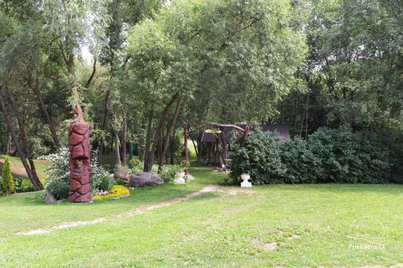 Sodyba Pas lapę prie Nevėžio upės - poilsiui ir šventėms - 24