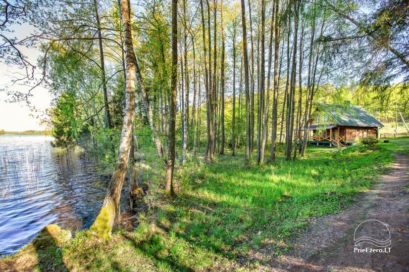 Ažuluokesos sodyba Molėtų rajone prie Luokesų ežero - 11