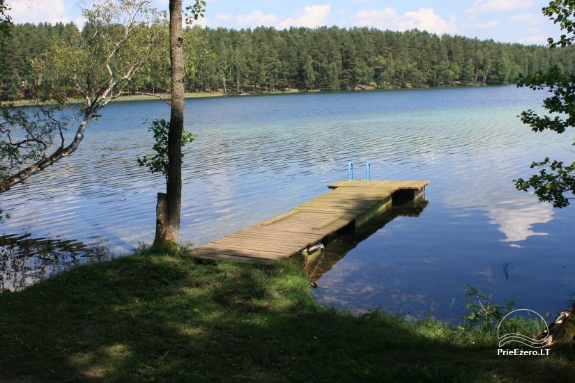 Ažuluokesos sodyba Molėtų rajone prie Luokesų ežero - 5