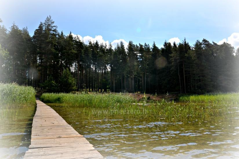 Svečių namai prie PLATELIŲ ežero Banga - 34