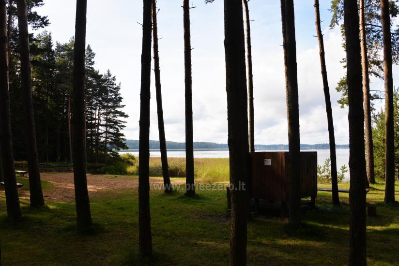 Svečių namai prie PLATELIŲ ežero Banga - 33