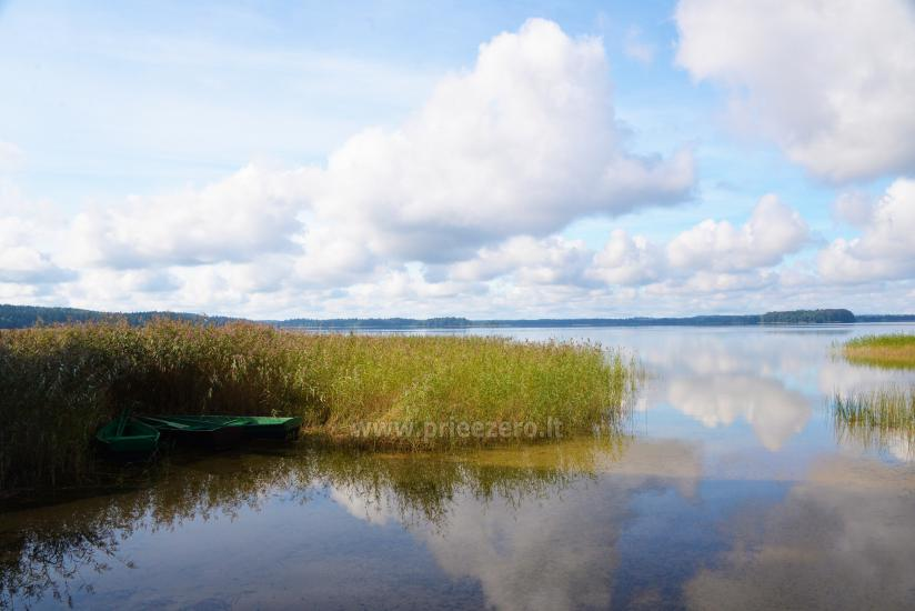 Svečių namai prie PLATELIŲ ežero Banga - 2