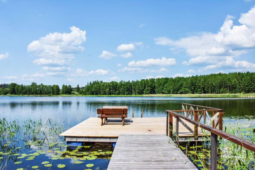 "Sodyba ant ežero kranto Ignalinos raj. ""Tundra"" - 12"