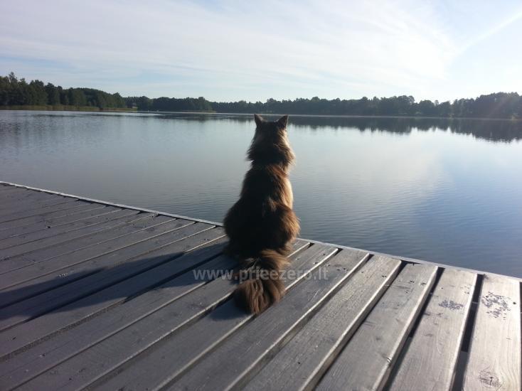 Žvejo namelis žvejybai arba Romantiškam poilsiui - 11