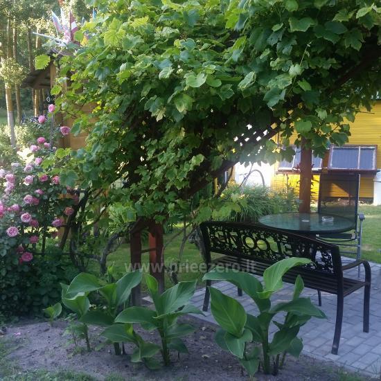 Ventė Šturmų sodyba - apartamentai, studio apartamentai, kavinė - 2