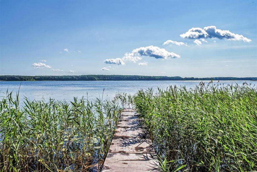 Nameliai Molėtų rajone Pušų pavėsyje, prie Arino ežero - 14