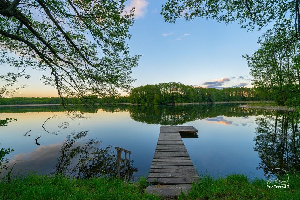 Nameliai Alytaus rajone prie Daugų ežero Daug gėlių - 3