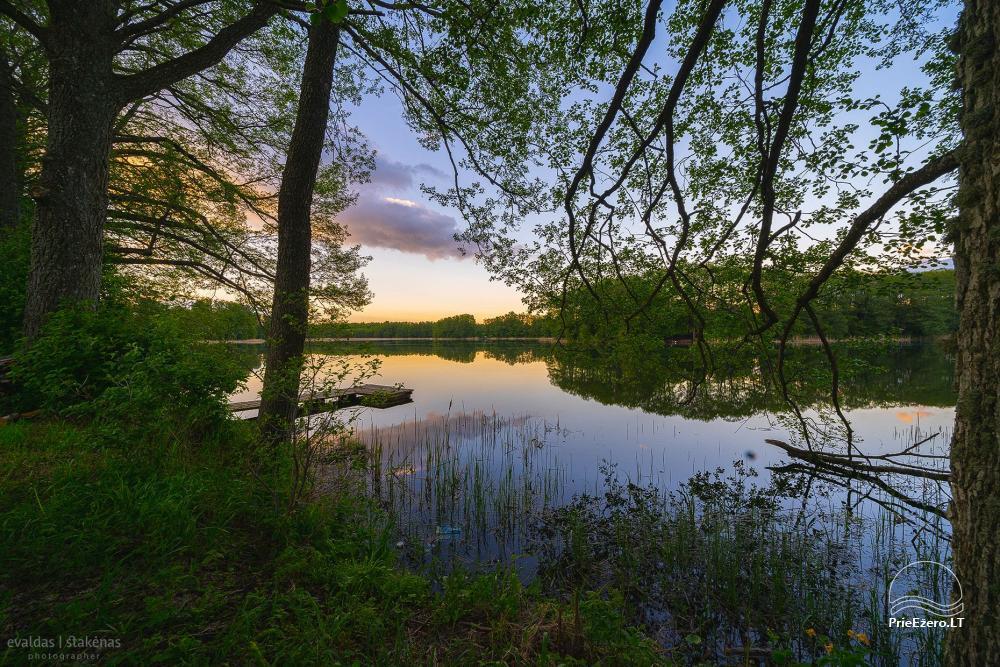 Nameliai Alytaus rajone prie Daugų ežero Daug gėlių - 4