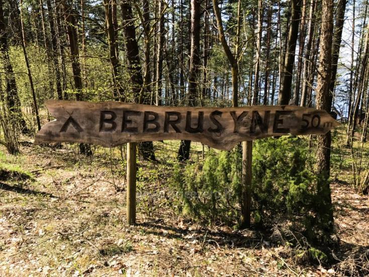 Stovyklavietė Bebrusynė - 1