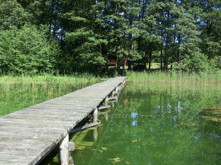 Namelis Sapiegiškių kaime, ant Seliovinio ežero kranto - 5