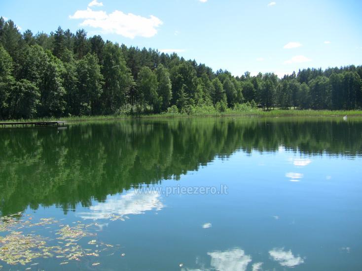 Namelis Sapiegiškių kaime, ant Seliovinio ežero kranto - 22