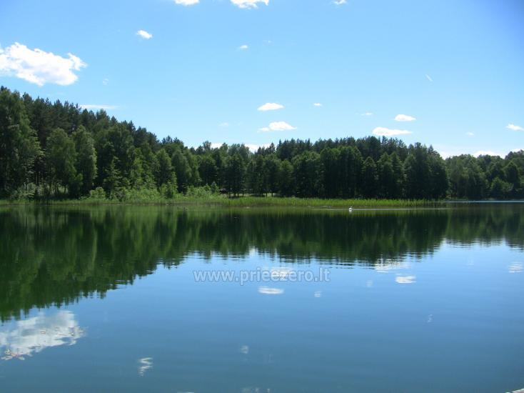 Namelis Sapiegiškių kaime, ant Seliovinio ežero kranto - 24