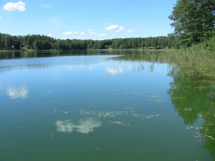 Namelis Sapiegiškių kaime, ant Seliovinio ežero kranto - 25