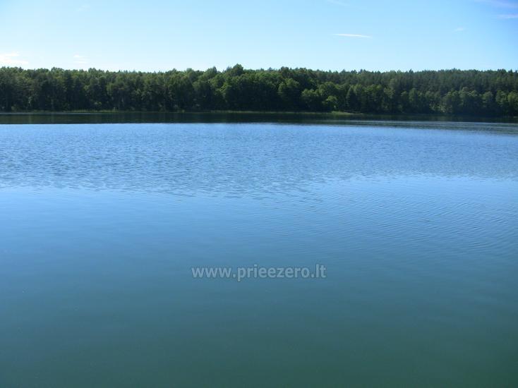 Namelis Sapiegiškių kaime, ant Seliovinio ežero kranto - 26