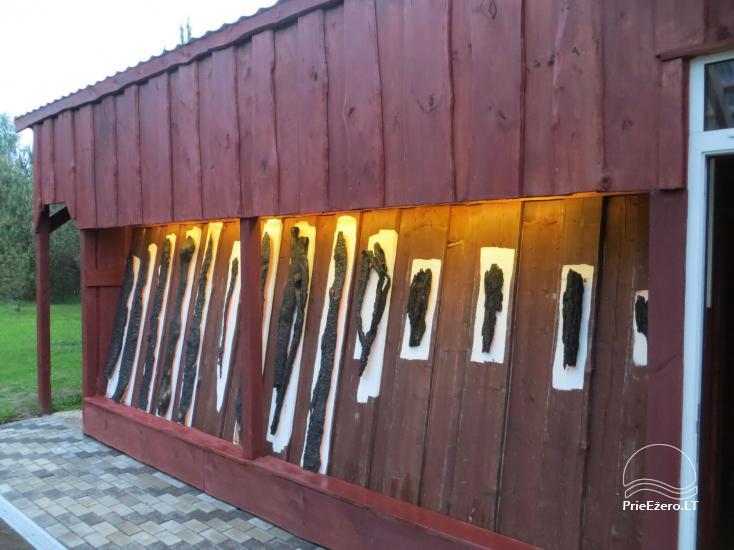 Namelių, sodybos, pirties, kubilo, baidarių nuoma prie DVIRAGIO ežero - 36