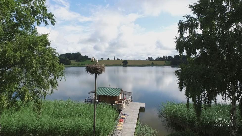 Namelių, sodybos, pirties, kubilo, baidarių nuoma prie DVIRAGIO ežero - 39