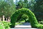 Alės Podėnienės Sodyba Biržų rajone - šventėms, nakvynei ir poilsiui,seminarams,  susitikimams - 2