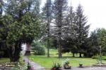 Alės Podėnienės Sodyba Biržų rajone - šventėms, nakvynei ir poilsiui,seminarams,  susitikimams - 10