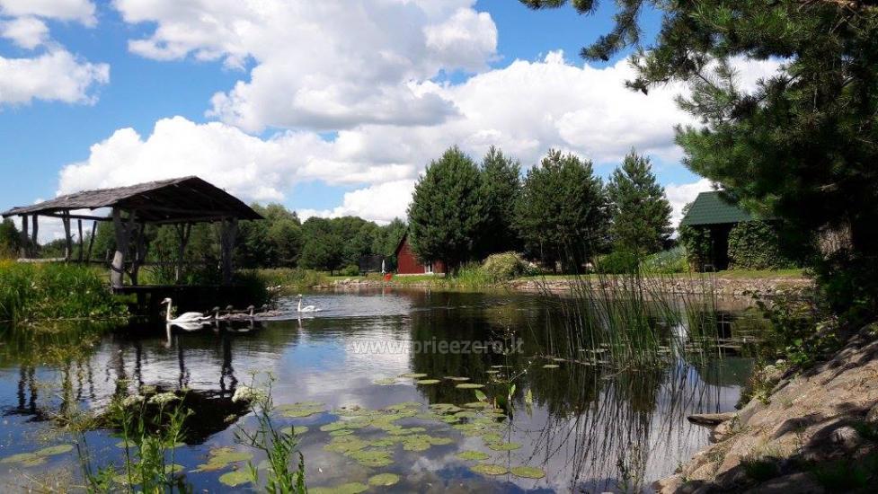 Alės Podėnienės Sodyba Biržų rajone - šventėms, nakvynei ir poilsiui,seminarams,  susitikimams - 9