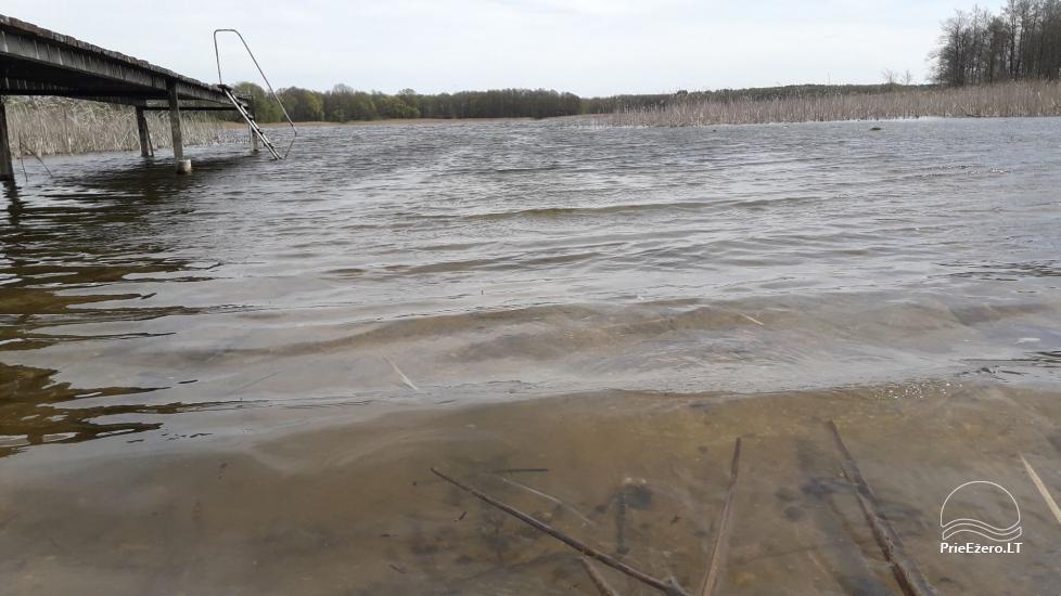 Sodyba su pirtimi prie Zapsio Ežero - 29