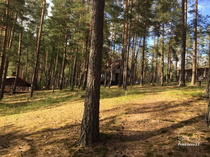 Poilsio namai 40 km nuo Vilniaus centro, prie Pailgio ežero - 12