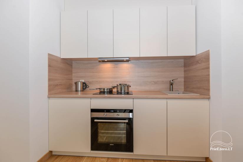 Šilo apartamentai Druskininkuose - 4