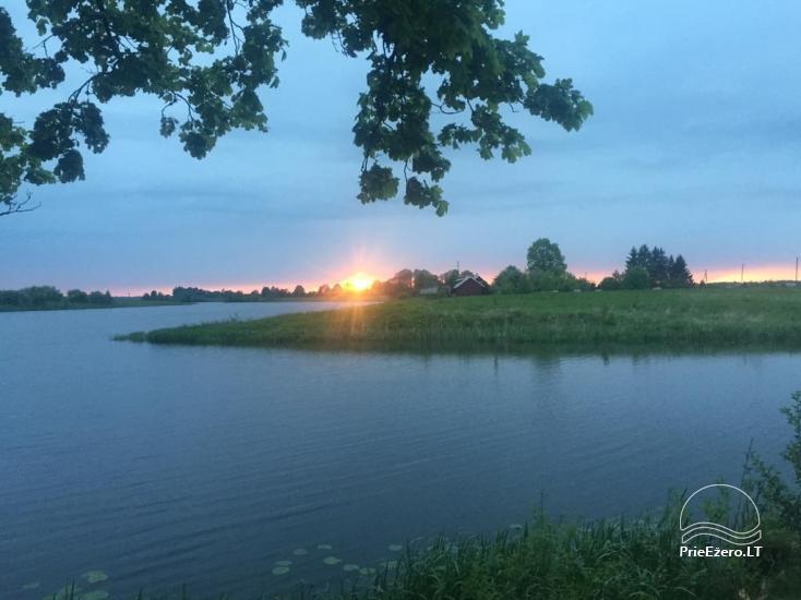 Sodybos nuoma Jurbarko rajone su nedideliu ežeru kieme - 3
