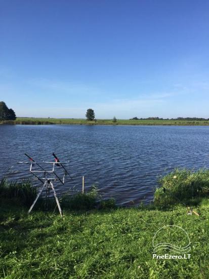 Sodybos nuoma Jurbarko rajone su nedideliu ežeru kieme - 4