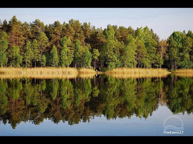 Sodyba prie Ilgio ežero - 50
