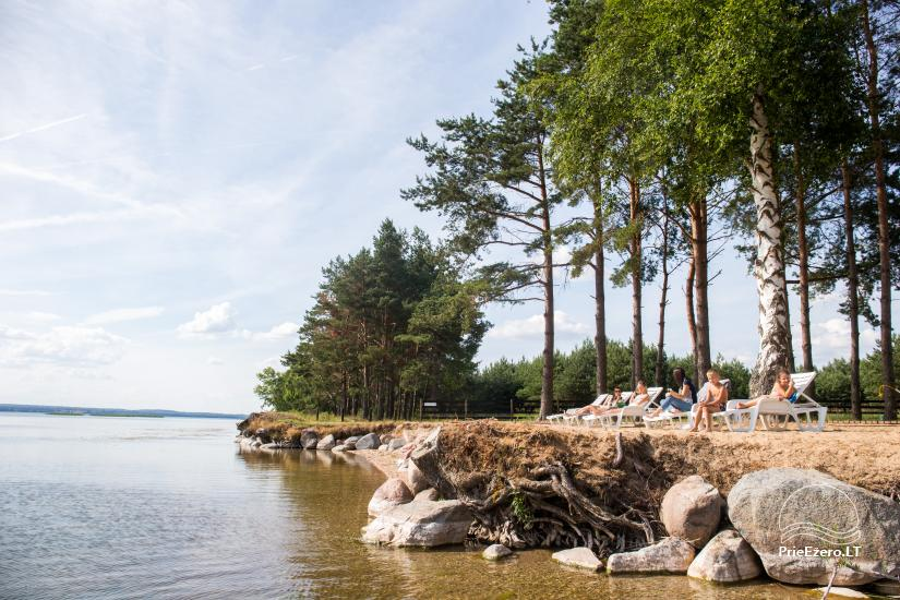 Dusios krantas - nameliai šeimos poilsiui prie Dusios ežero - 5