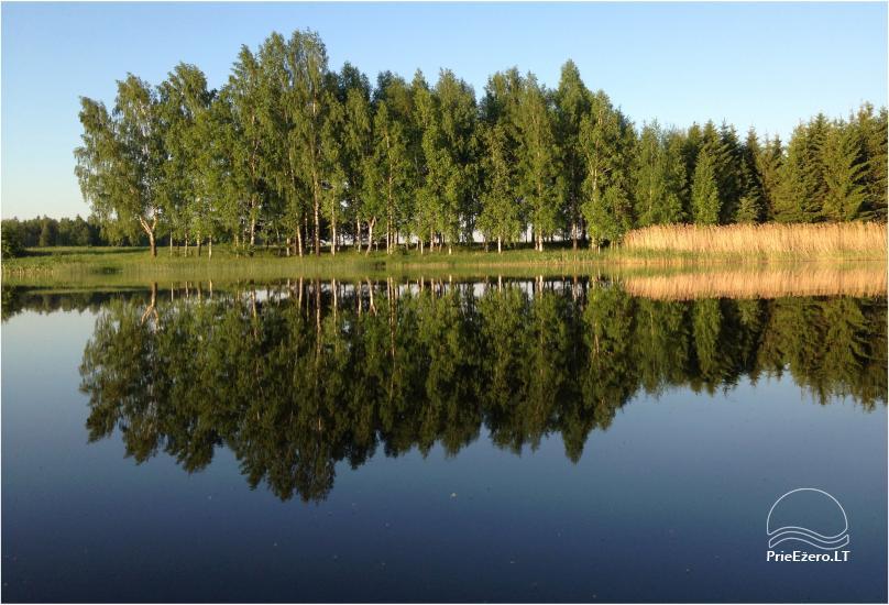 Panekelpių kaimas:sodyba su pirtim Radviliškio raj. prie Pociūnėlių tvenkinio - 14